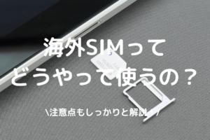 海外SIMの使い方の写真